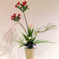 池坊立2花